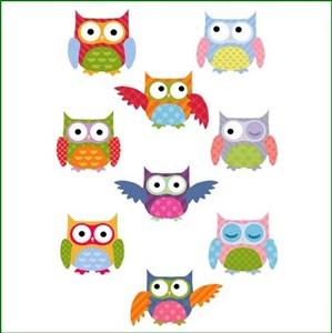 Sprei Star Cipadu motif Little Owl-1